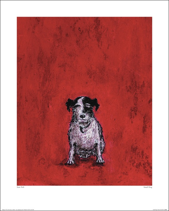 Sam Toft (Small Dog) Art Prints