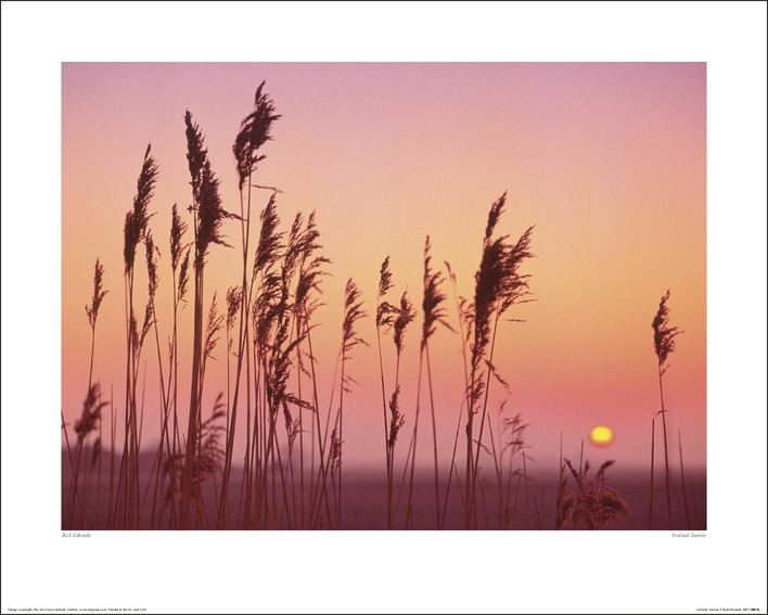 Rod Edwards (Fenland Sunrise) Art Print