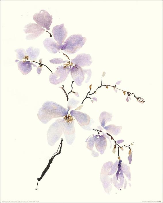 Summer Thornton (Gentle Breeze I) Art Prints