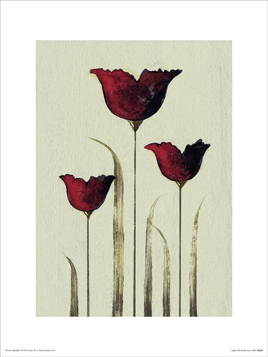Nicola Evans (Tulips III) Art Prints