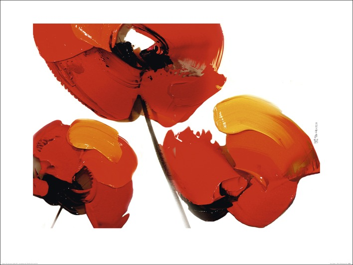Tibi Hegyesi (Three Poppies - White) Art Print