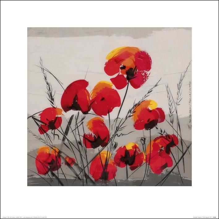 Tibi Hegyesi (Multiple Poppies) Art Prints
