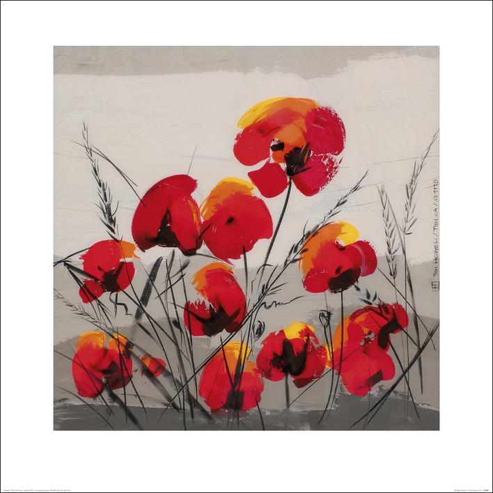 Tibi Hegyesi (Multiple Poppies) Art Print