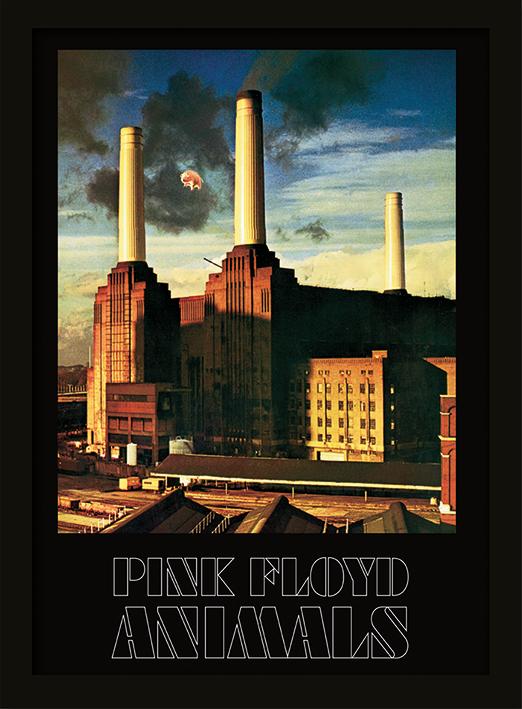 Pink Floyd (Animals) Memorabilia