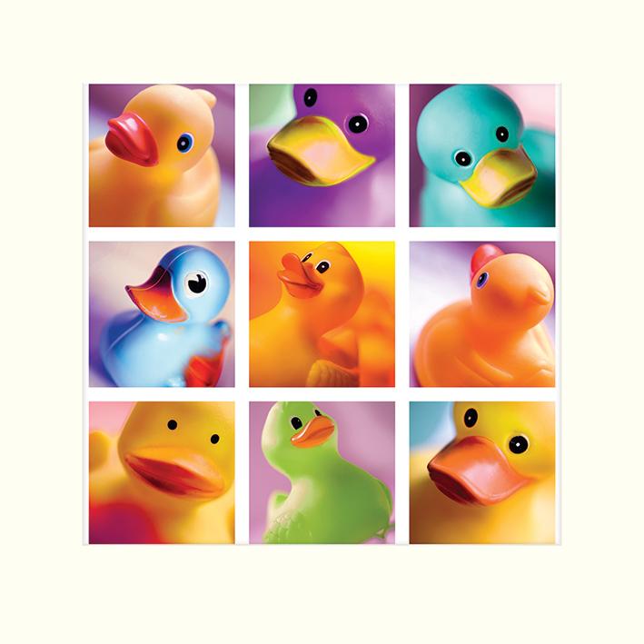 Ian Winstanley (Duck Family Portraits) Mounted Prints