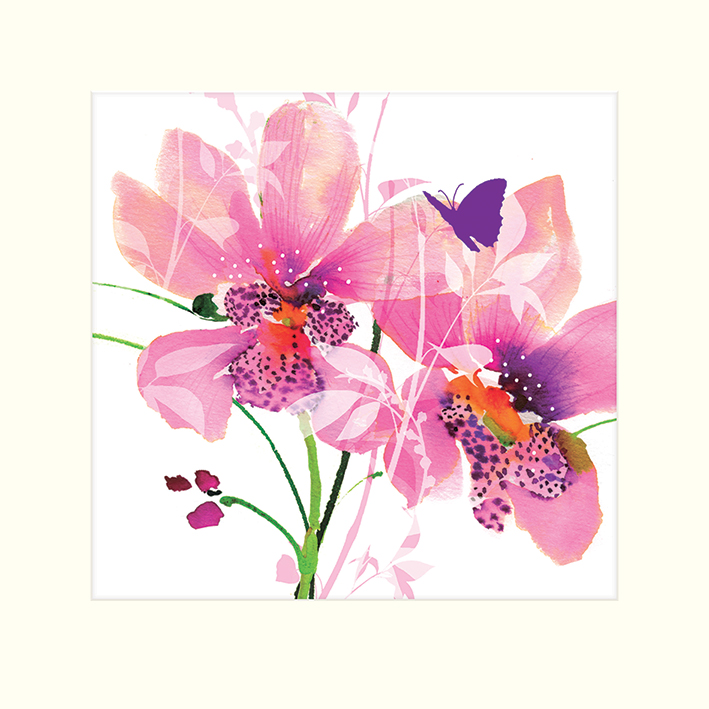 Summer Thornton (Orchid Blush) Mounted Print