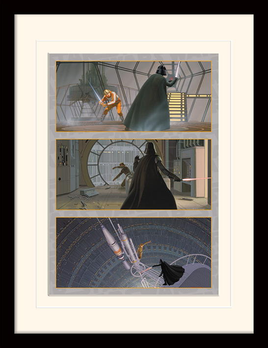 Star Wars (Luke Battles Darth Vader) Memorabilia