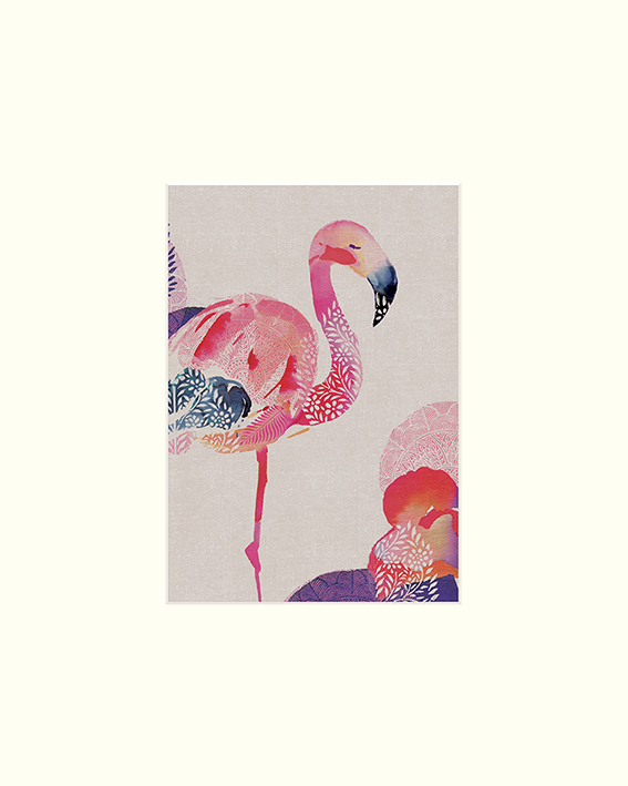 Summer Thornton (Tropical Flamingo) Mounted Prints