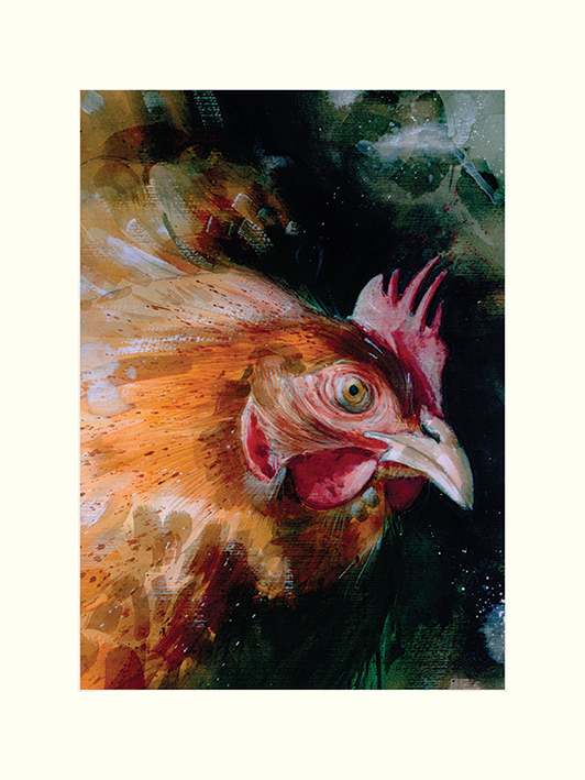 Simon Howden (Brown Chicken) Mounted Prints