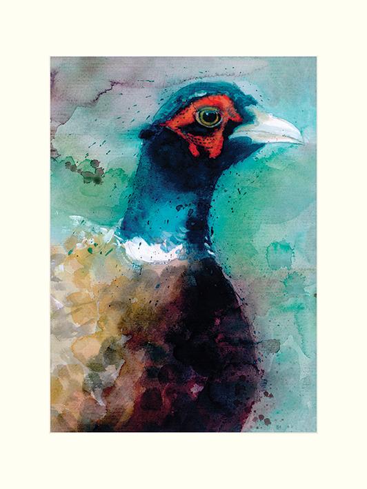 Simon Howden (Male Pheasant) Mounted Prints