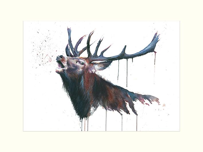 Sarah Stokes (Roar) Mounted Print