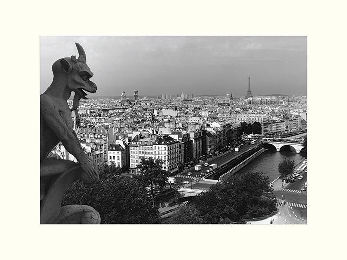 Heiko Lanio (View from Notre-Dame, Paris) Mounted Prints