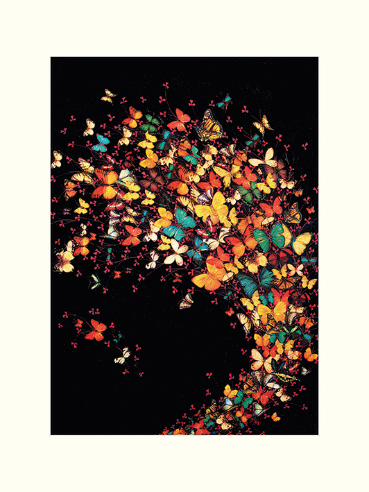 Lily Greenwood (Butterflies on Black) Mounted Prints