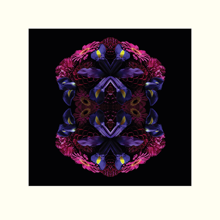 Alyson Fennell (Floral Nirvana) Mounted Prints