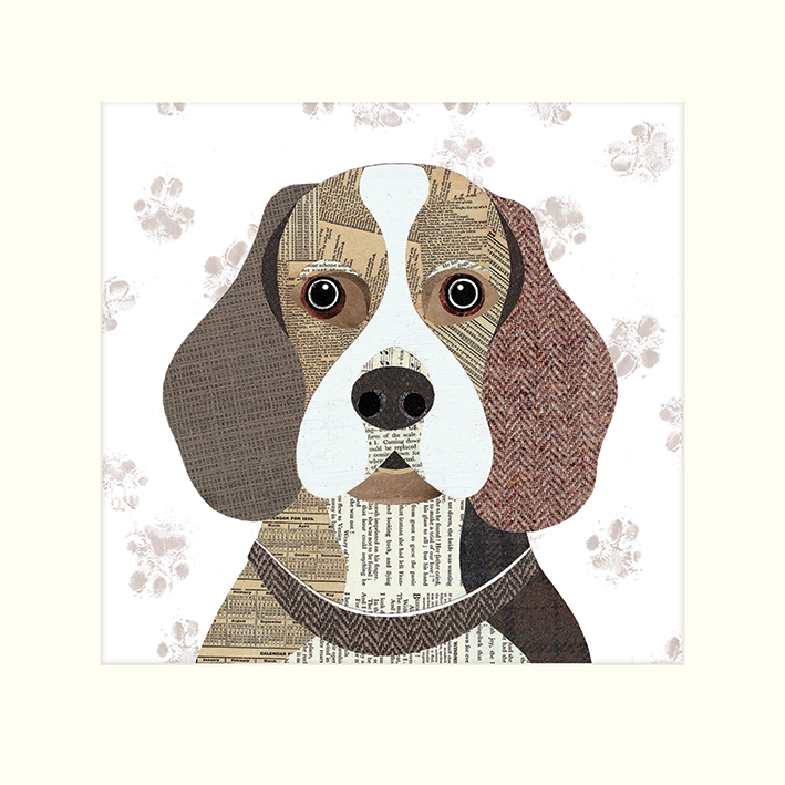 Simon Hart (Beagle) Mounted Print