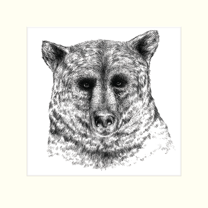 Sofie Rolfsdotter (Bear) Mounted Prints