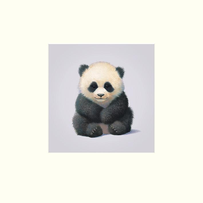 John Butler (Panda) Mounted Prints