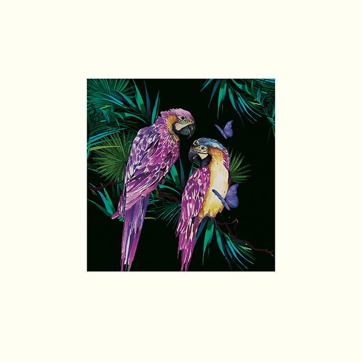 Summer Thornton (Parrots) Mounted Prints
