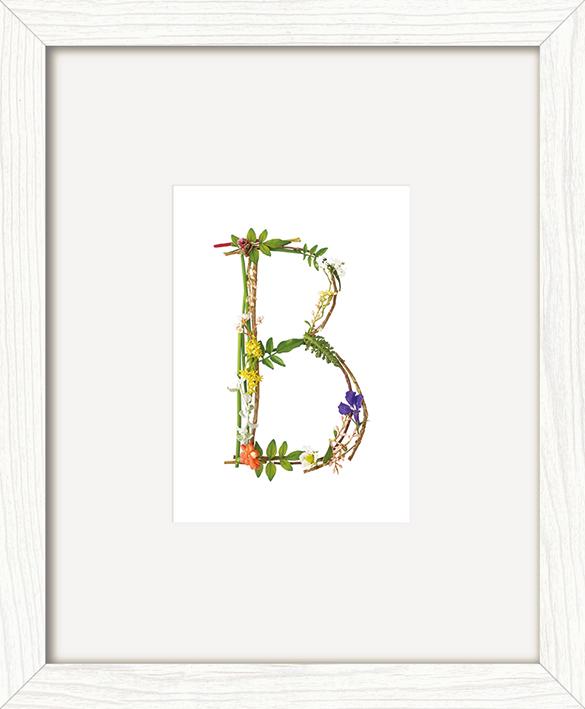 Howard Shooter (Floral B) Pre-Framed Print