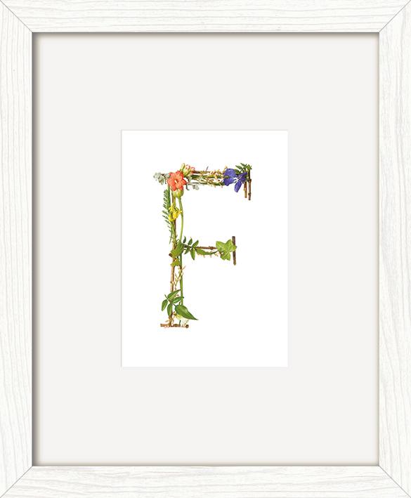 Howard Shooter (Floral F) Pre-Framed Print