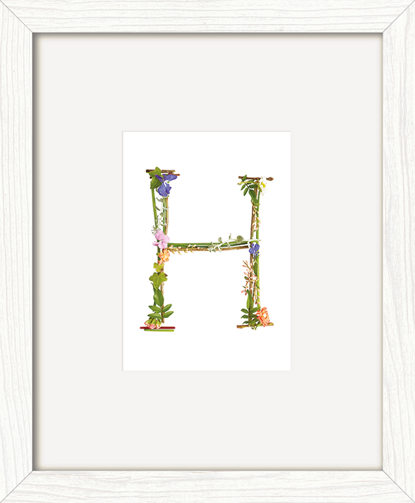 Howard Shooter (Floral H) Pre-Framed Print