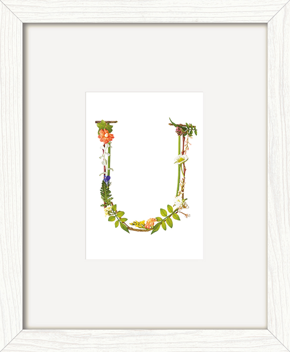 Howard Shooter (Floral U) Pre-Framed Art Print
