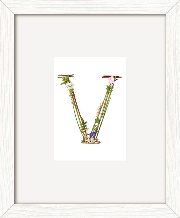 Howard Shooter (Floral V) Pre-Framed Art Prints