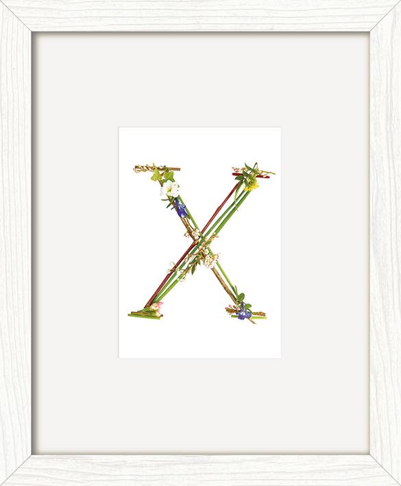 Howard Shooter (Floral X) Pre-Framed Art Print