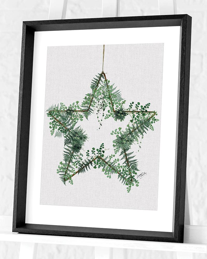 Fern Star Canvas Print WDC94919 size 50 X 40cm Summer Thornton