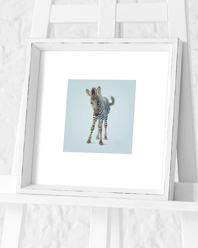 John Butler (Zebra) Pre-Framed Art Print