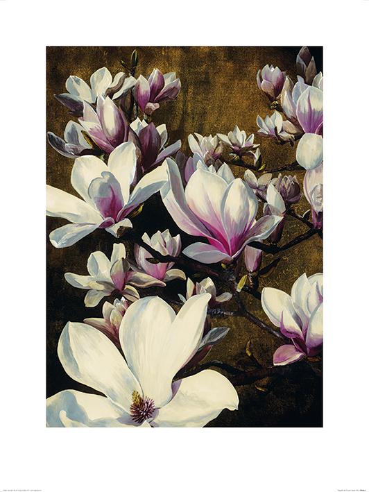 Sarah Caswell (Magnolia Silk) Art Print
