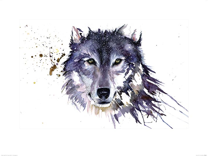Sarah Stokes (Snow Wolf) Art Prints