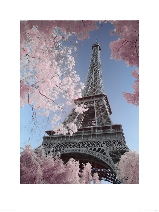 David Clapp (Eiffel Tower Infrared, Paris) Art Print