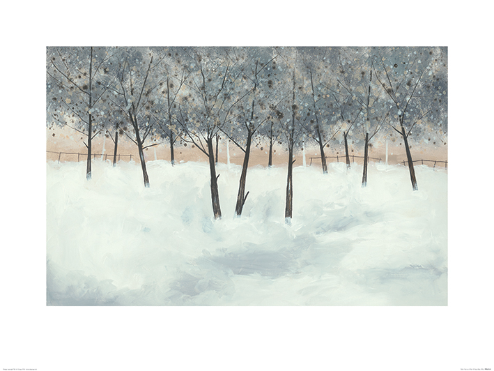 Stuart Roy (Silver Trees on White) Art Print