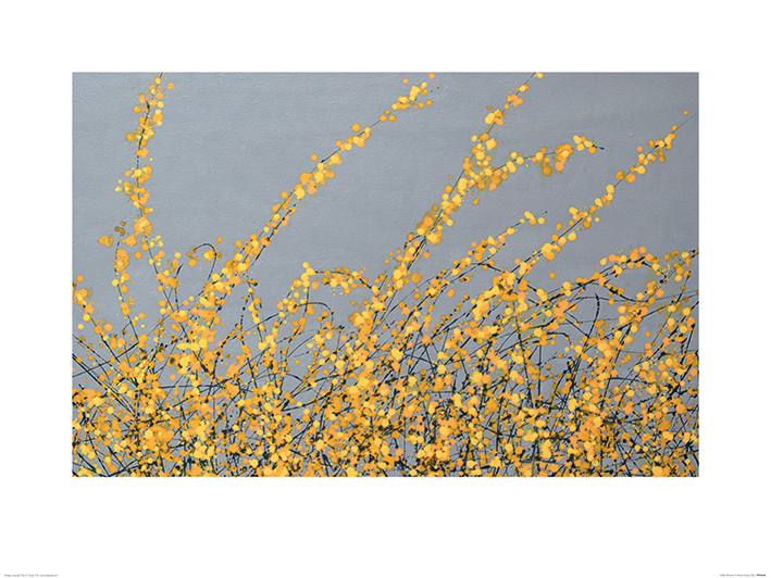 Simon Fairless (Yellow Blossom) Art Prints