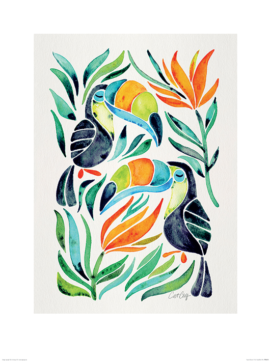 Cat Coquillette (Tropical Toucans) Art Print