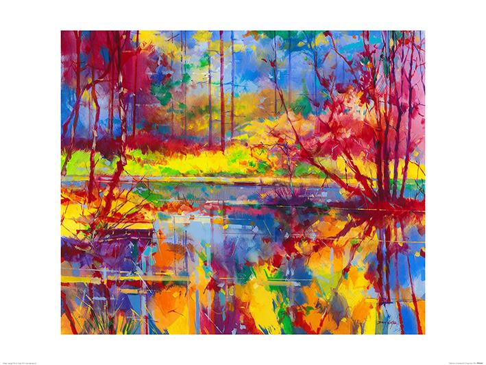 Doug Eaton (Reflections at Meadowcliff) Art Prints