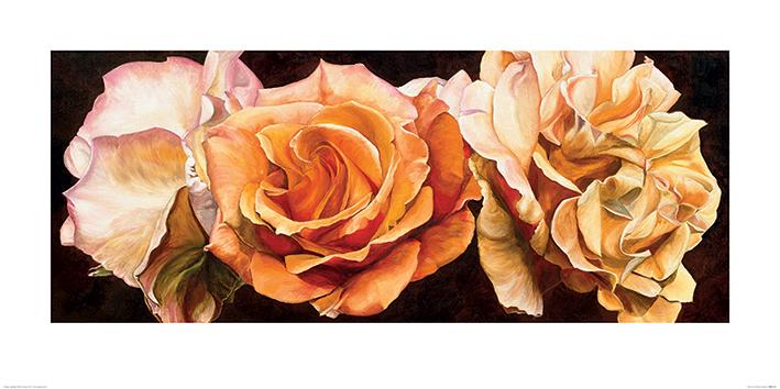 Sarah Caswell (Rose Trio) Art Prints