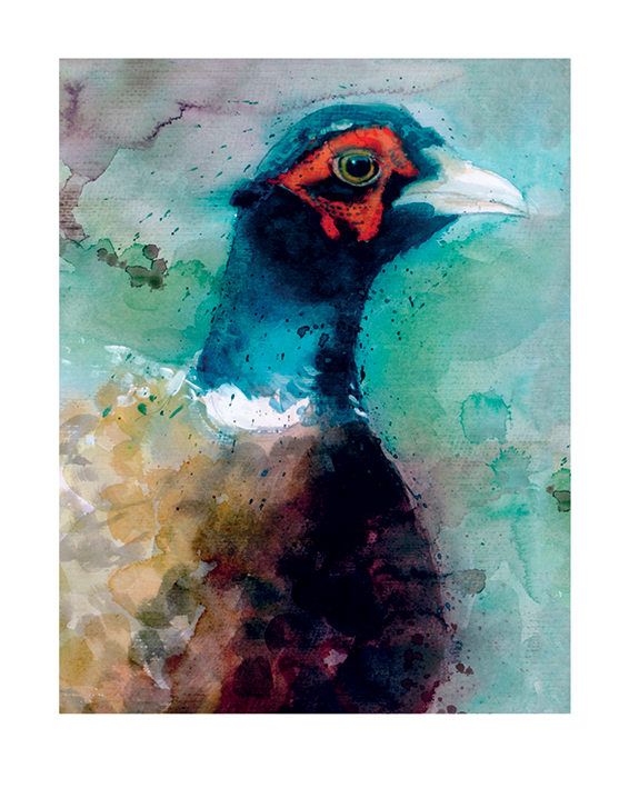 Simon Howden (Male Pheasant) Art Prints