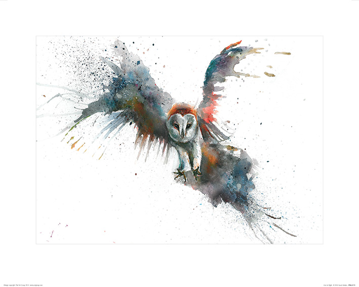 Sarah Stokes (Eric In Flight) Art Prints