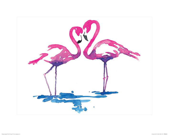 Sarah Stokes (Flamingo Study) Art Print