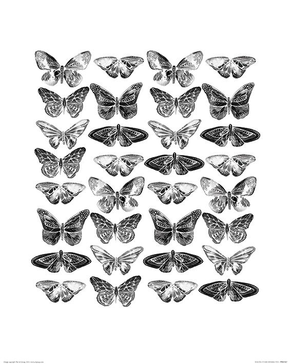 Sofie Rolfsdotter (Butterflies) Art Prints