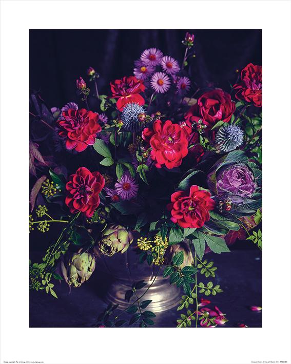 Howard Shooter (Baroque Flowers) Art Print