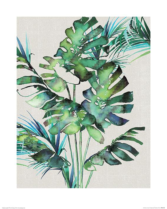 Summer Thornton (Monstera Leaves) Art Prints