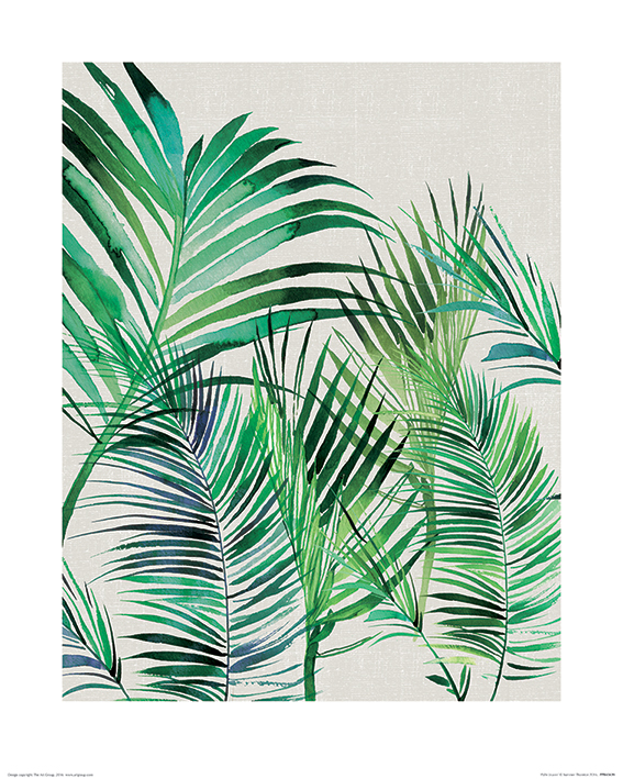 Summer Thornton (Palm Leaves) Art Prints