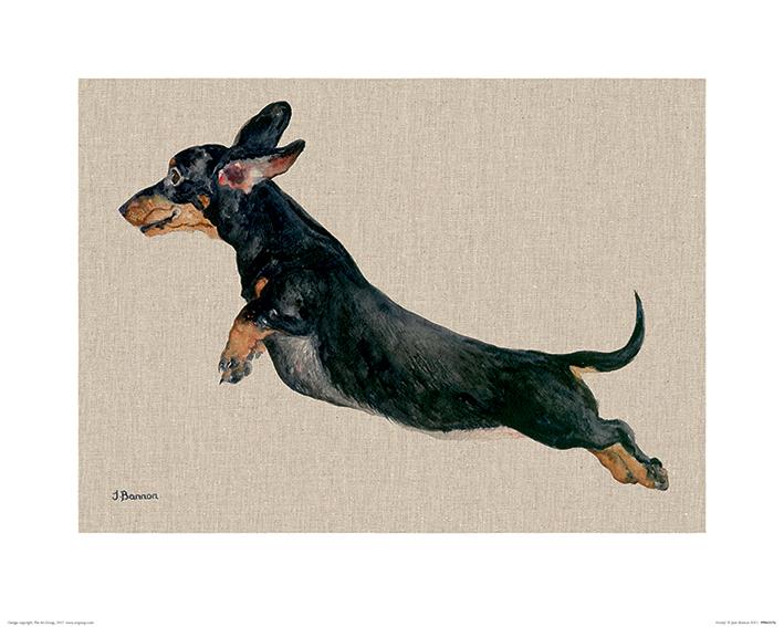 Jane Bannon (Freddy) Art Prints