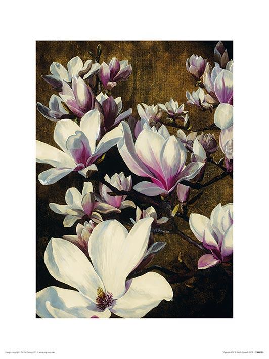 Sarah Caswell (Magnolia Silk) Art Prints