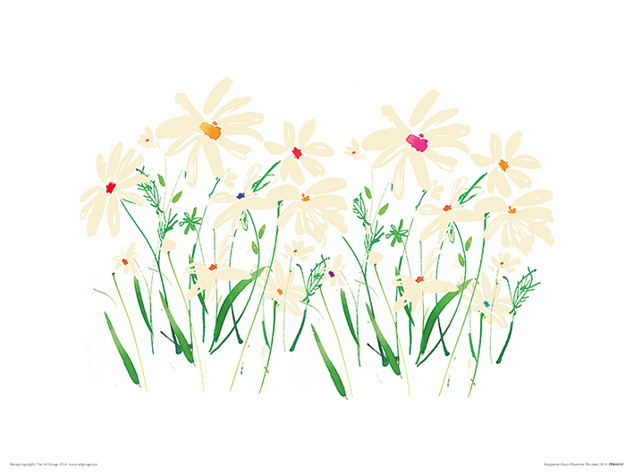 Summer Thornton (Marguerite Daisy) Art Print