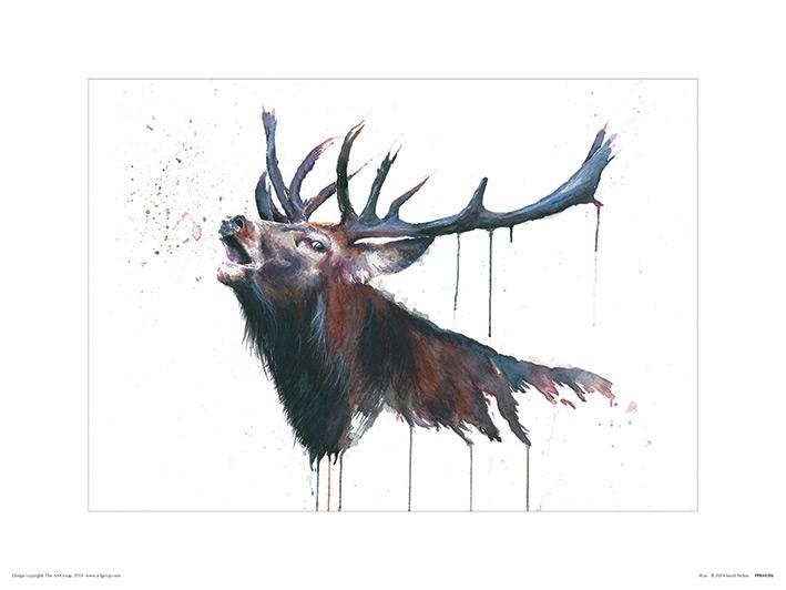 Sarah Stokes (Roar) Art Print