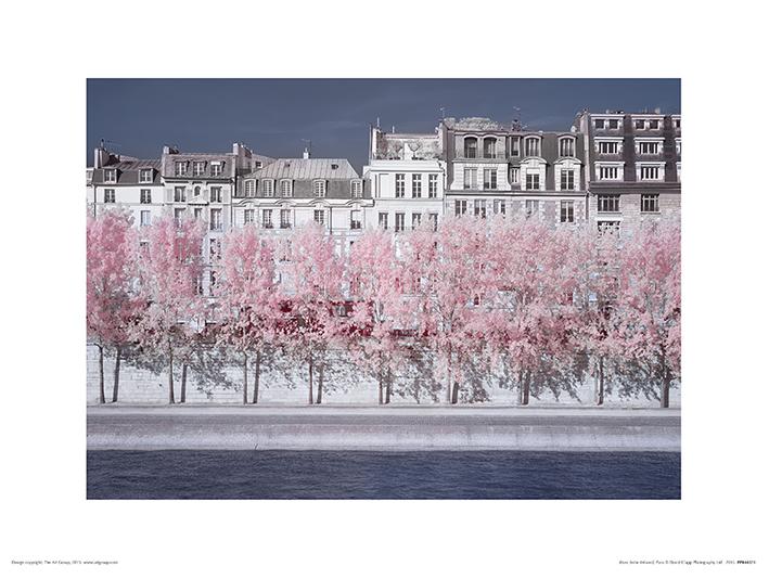 David Clapp (River Seine Infrared, Paris) Art Prints